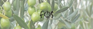 Fos cover